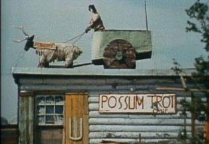 Possum Trot